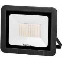 Прожектор світлодіодний MAGNUM_FL ECO LED 100Вт slim_6500К_IP65