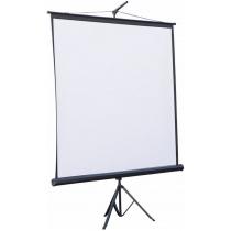 Екран проекційний (4x3) 203 х 153 см. на тринозі ATRIA