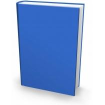 Книга обліку 192 аркуша лінійка бумвініл